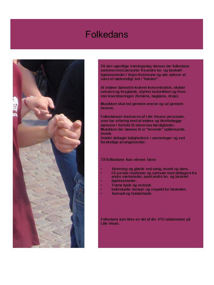 Folkedans Til folkedans kan eleven lære: