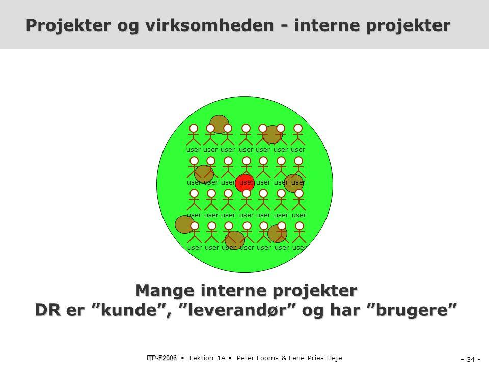 Projekter og virksomheden - interne projekter