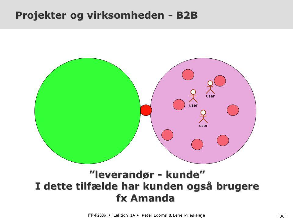 Projekter og virksomheden - B2B
