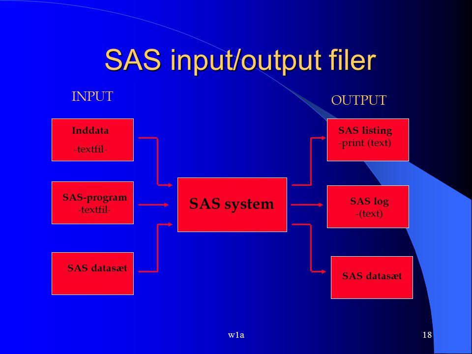 SAS input/output filer