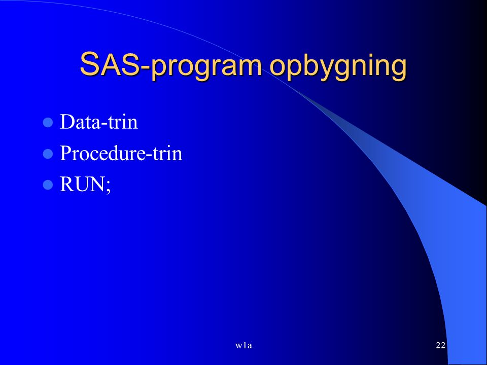 SAS-program opbygning