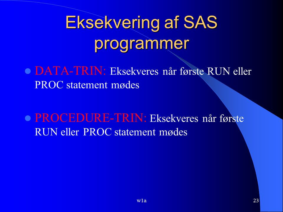 Eksekvering af SAS programmer