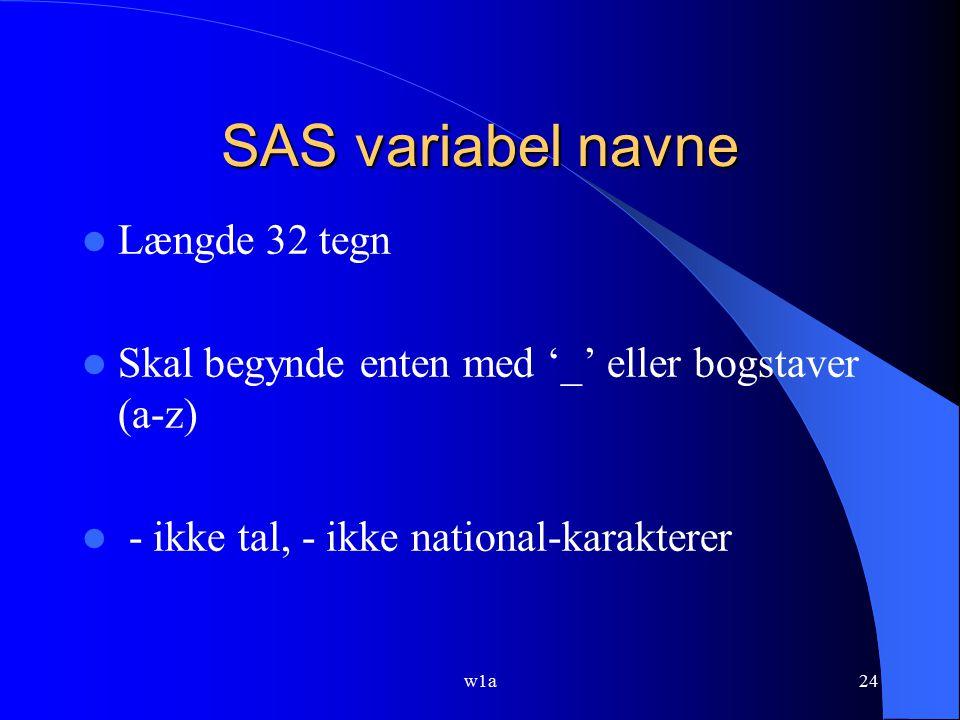 SAS variabel navne Længde 32 tegn