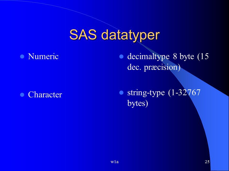 SAS datatyper Numeric Character decimaltype 8 byte (15 dec. præcision)