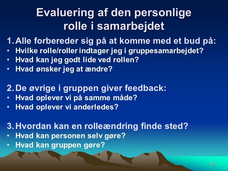 Evaluering af den personlige rolle i samarbejdet