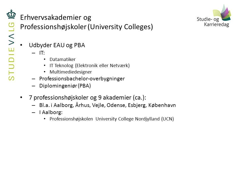 Erhvervsakademier og Professionshøjskoler (University Colleges)