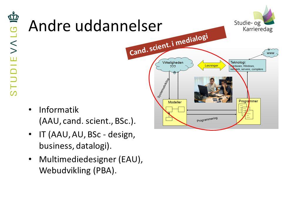 Andre uddannelser Informatik (AAU, cand. scient., BSc.).