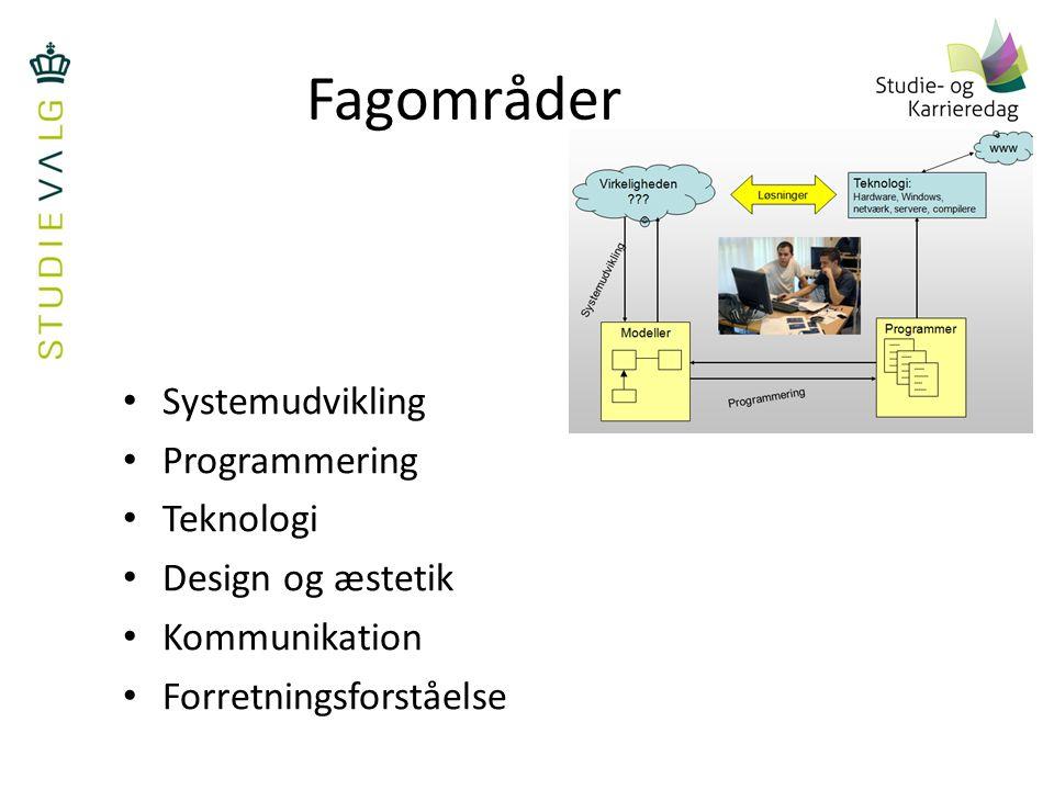 Fagområder Systemudvikling Programmering Teknologi Design og æstetik