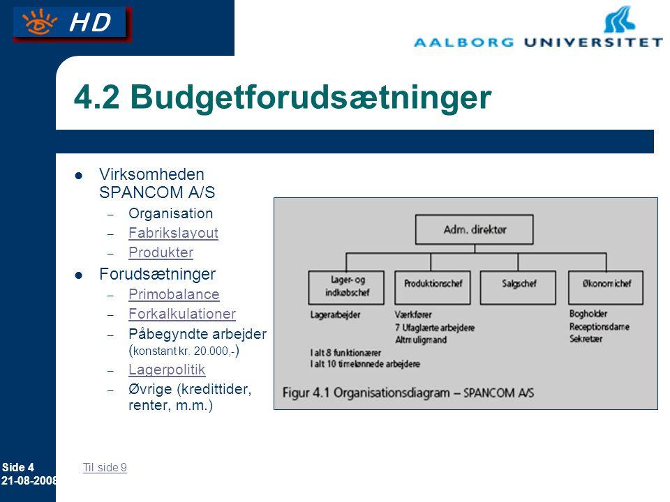 4.2 Budgetforudsætninger