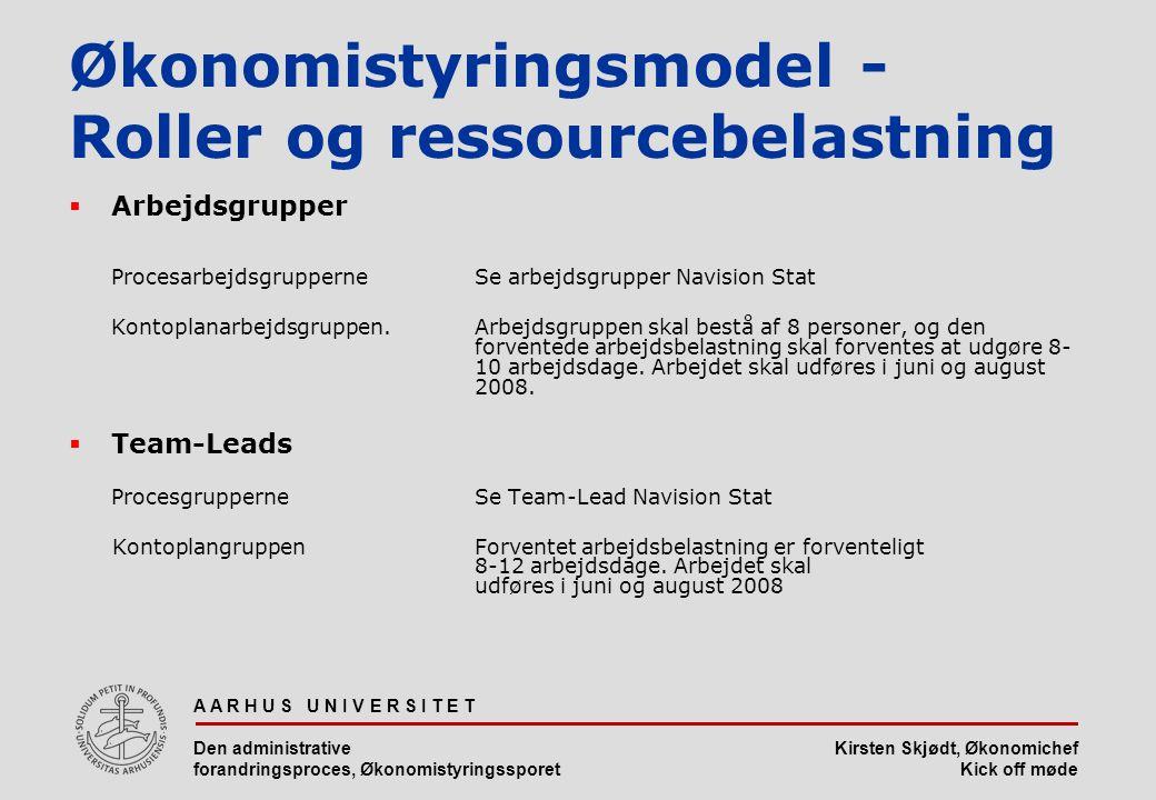 Økonomistyringsmodel - Roller og ressourcebelastning
