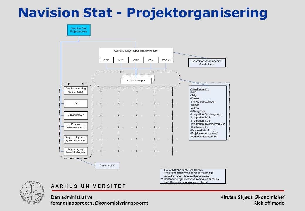 Navision Stat - Projektorganisering