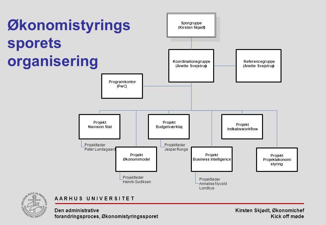 Økonomistyringssporets organisering