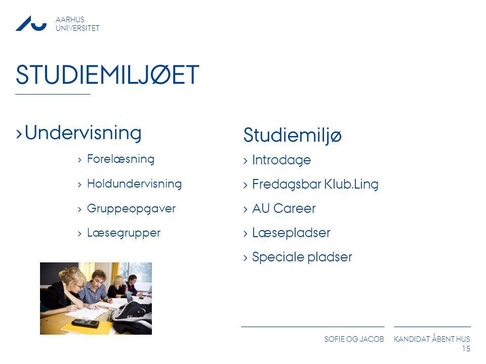 studiemiljøet Undervisning Studiemiljø Introdage Fredagsbar Klub.Ling
