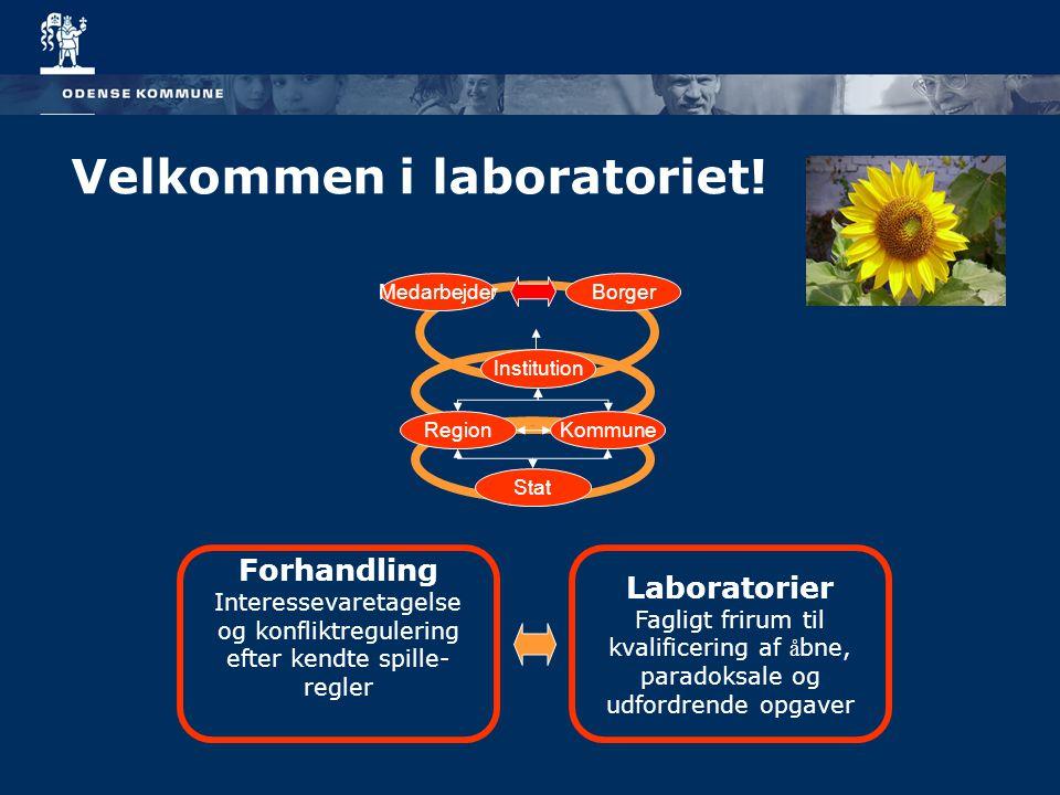 Velkommen i laboratoriet!