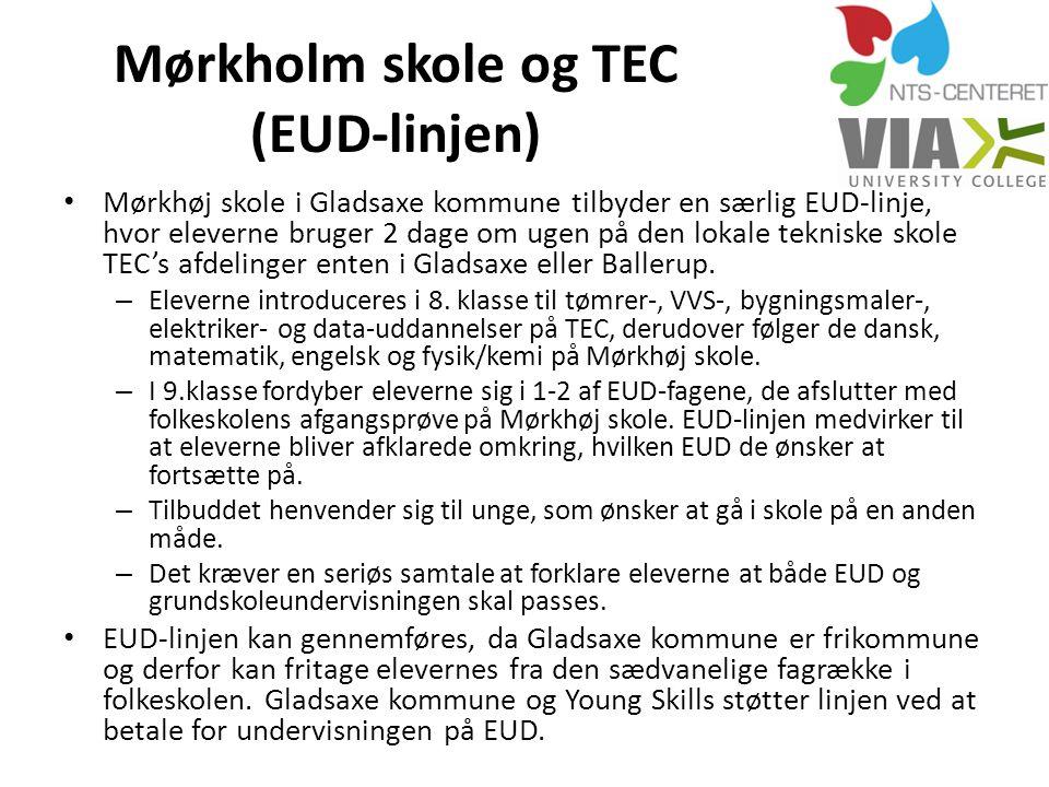 Mørkholm skole og TEC (EUD-linjen)