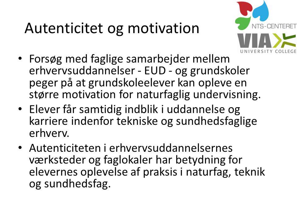 Autenticitet og motivation