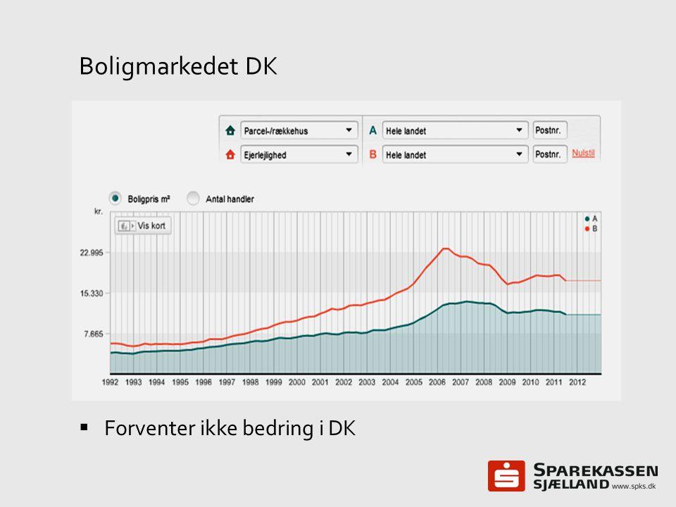 Boligmarkedet DK Forventer ikke bedring i DK