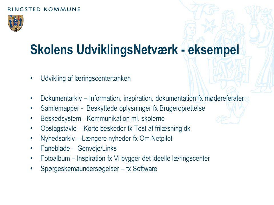 Skolens UdviklingsNetværk - eksempel