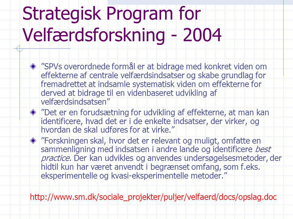 Strategisk Program for Velfærdsforskning - 2004