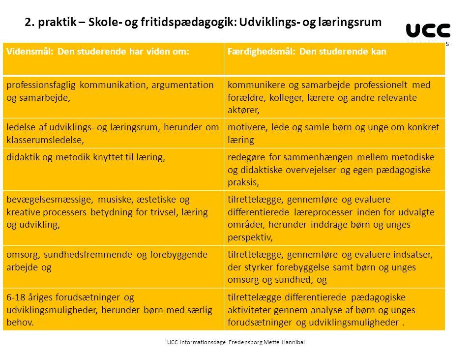 2. praktik – Skole- og fritidspædagogik: Udviklings- og læringsrum