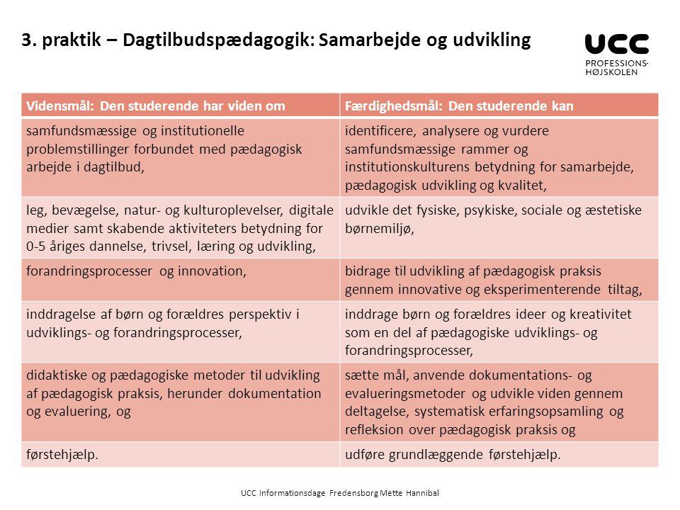 3. praktik – Dagtilbudspædagogik: Samarbejde og udvikling