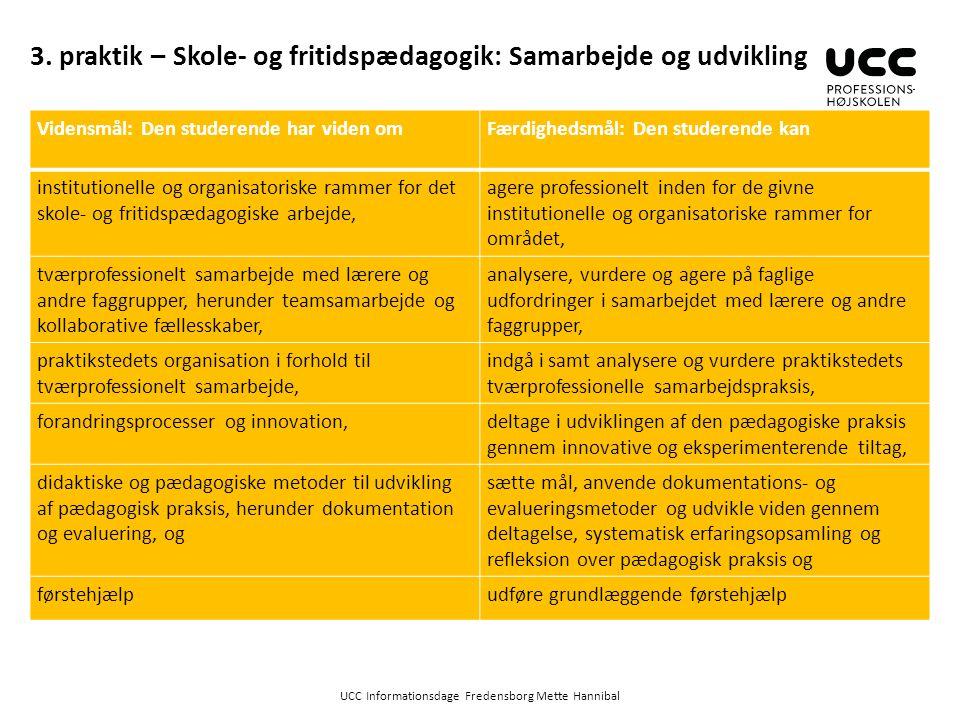 3. praktik – Skole- og fritidspædagogik: Samarbejde og udvikling