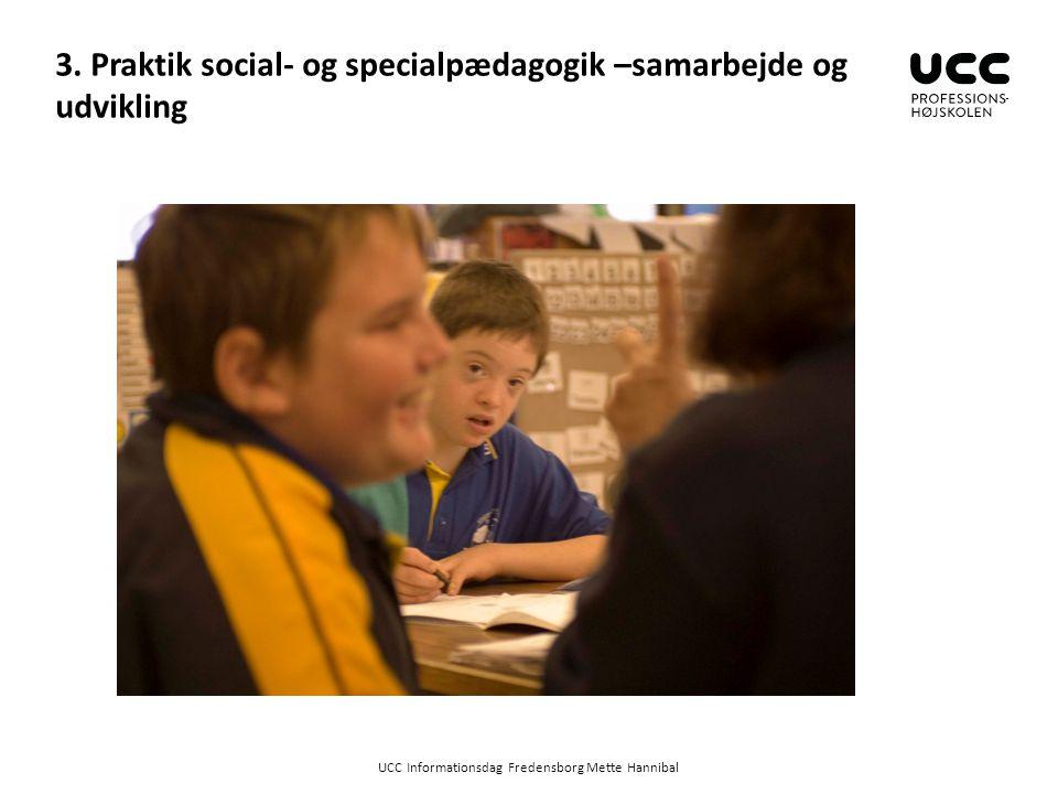 3. Praktik social- og specialpædagogik –samarbejde og udvikling