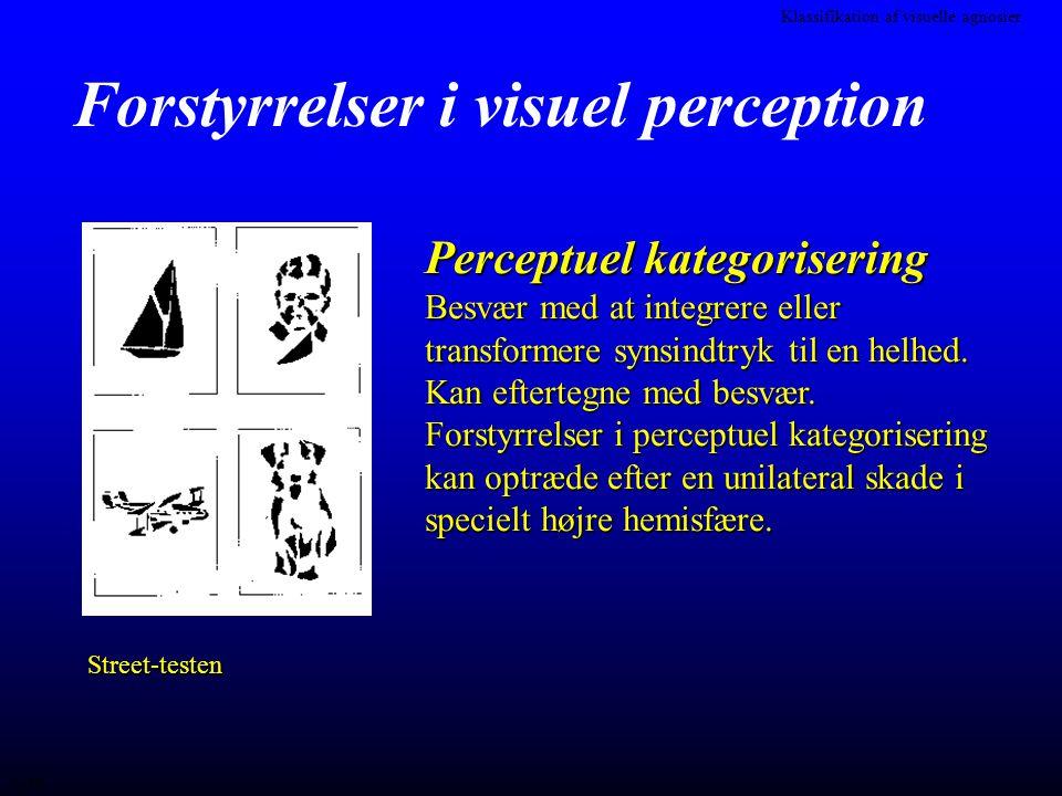 Forstyrrelser i visuel perception