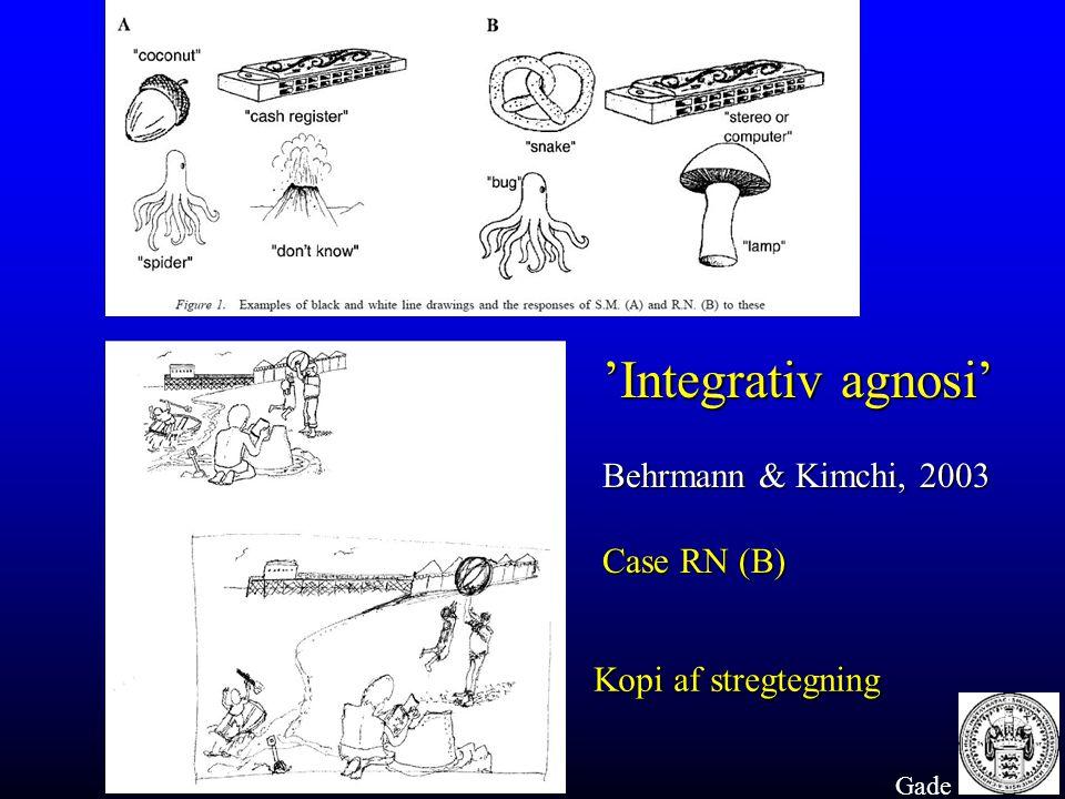 'Integrativ agnosi' Behrmann & Kimchi, 2003 Case RN (B)
