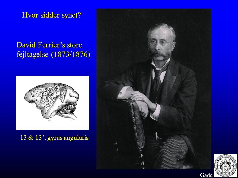 David Ferrier's store fejltagelse (1873/1876)