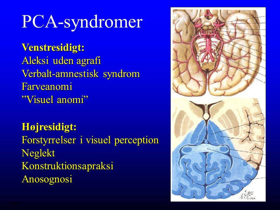 PCA-syndromer Venstresidigt: Aleksi uden agrafi Verbalt-amnestisk syndrom Farveanomi Visuel anomi
