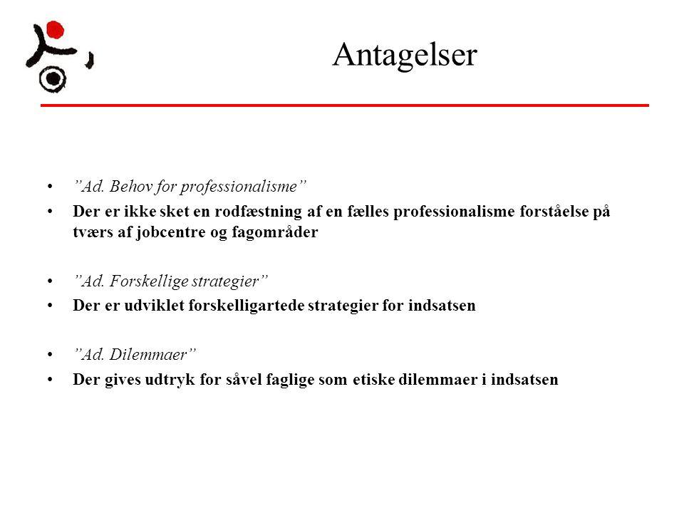 Antagelser Ad. Behov for professionalisme