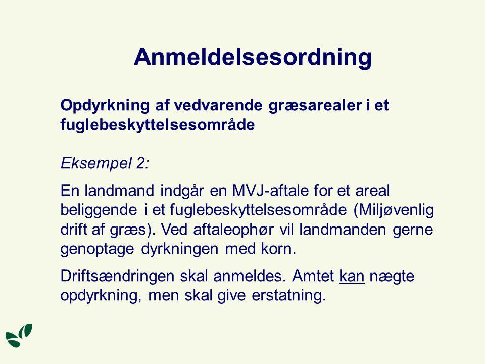 Anmeldelsesordning Opdyrkning af vedvarende græsarealer i et fuglebeskyttelsesområde. Eksempel 2: