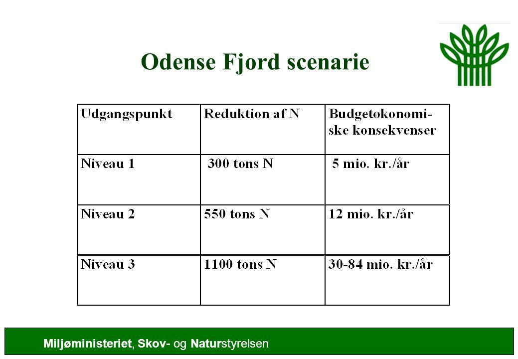 Odense Fjord scenarie