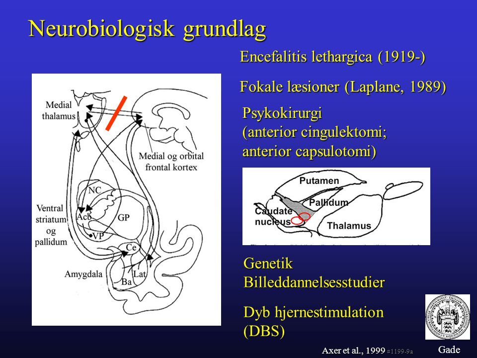 Neurobiologisk grundlag