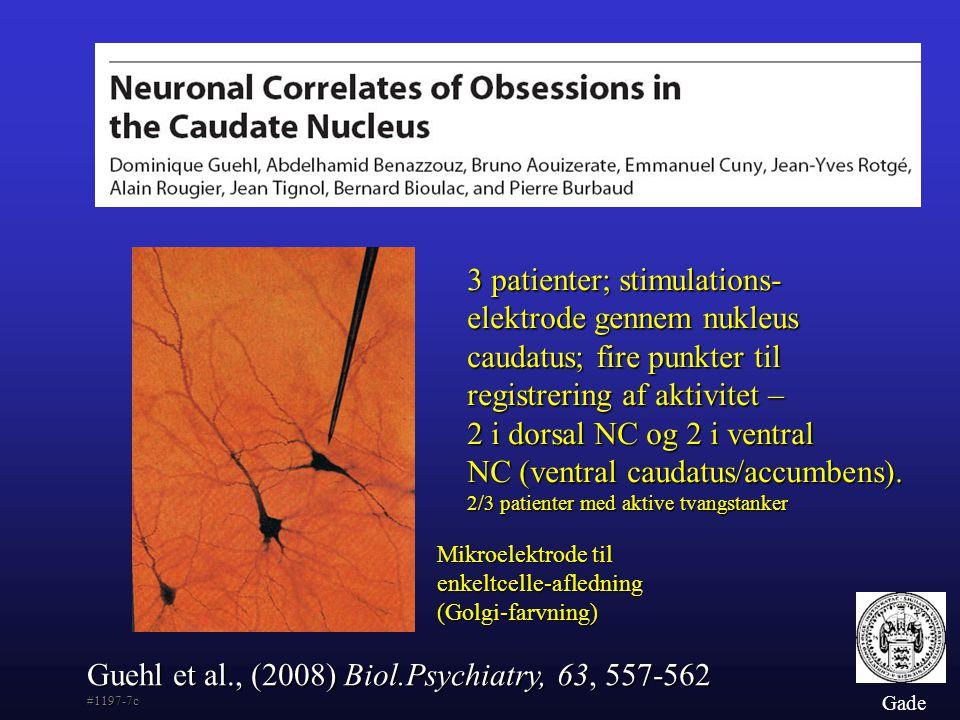 Guehl et al., (2008) Biol.Psychiatry, 63, 557-562