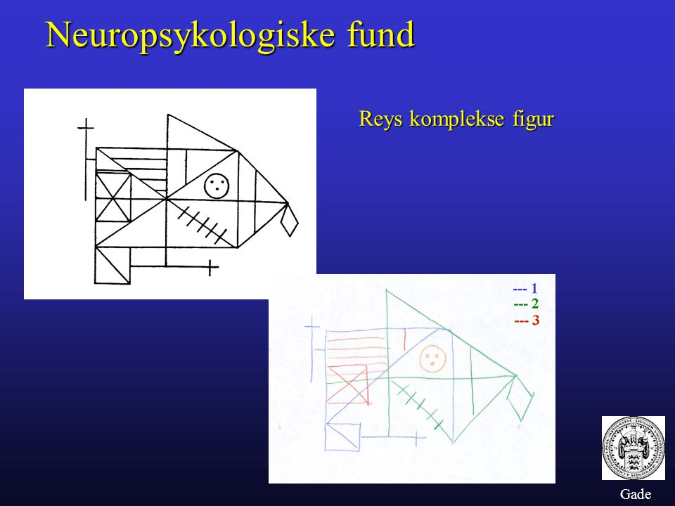 Neuropsykologiske fund