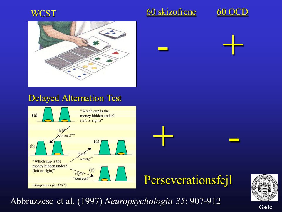 - + + - Perseverationsfejl 60 skizofrene 60 OCD WCST