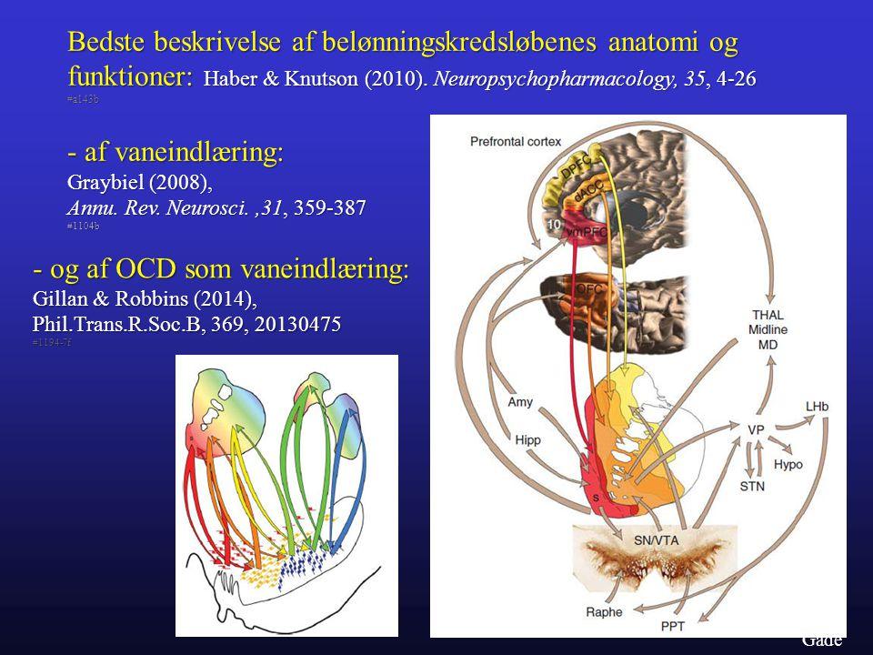 Bedste beskrivelse af belønningskredsløbenes anatomi og funktioner: Haber & Knutson (2010). Neuropsychopharmacology, 35, 4-26