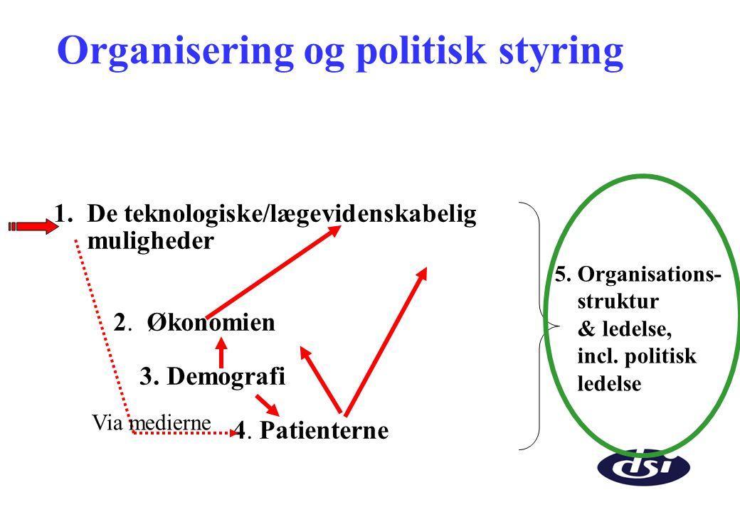 Organisering og politisk styring