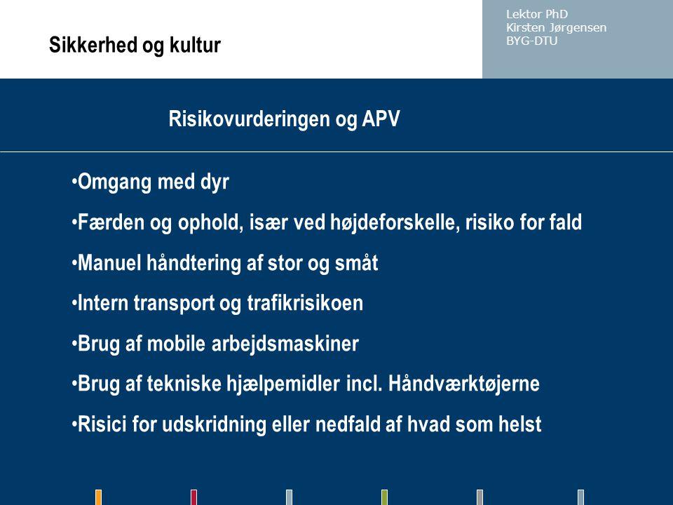 Risikovurderingen og APV
