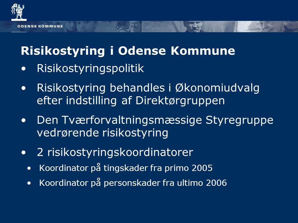 Risikostyring i Odense Kommune