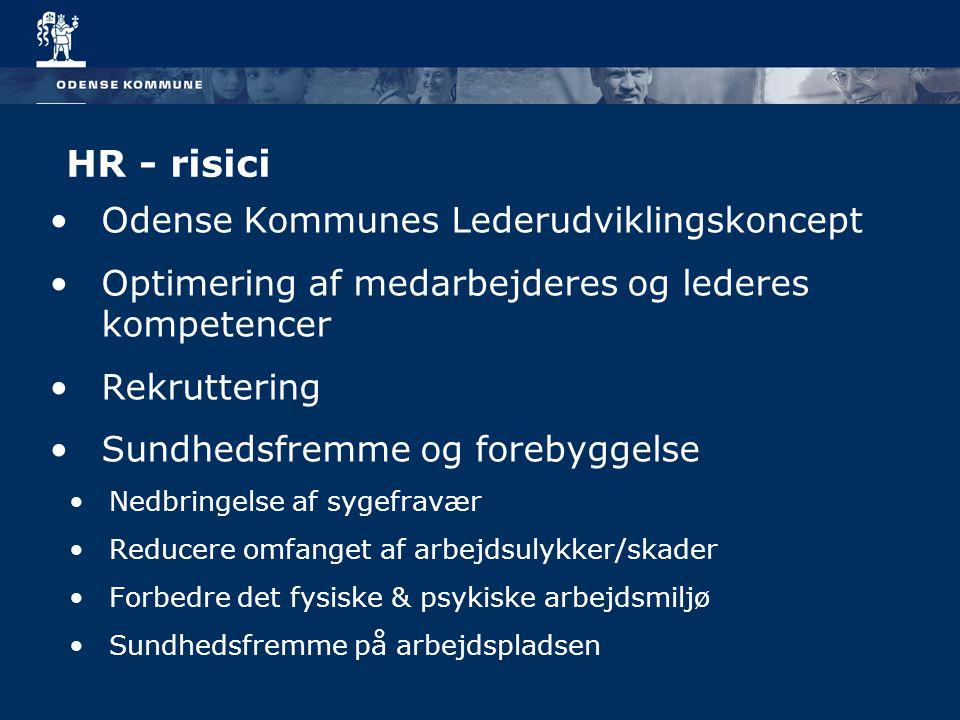 HR - risici Odense Kommunes Lederudviklingskoncept