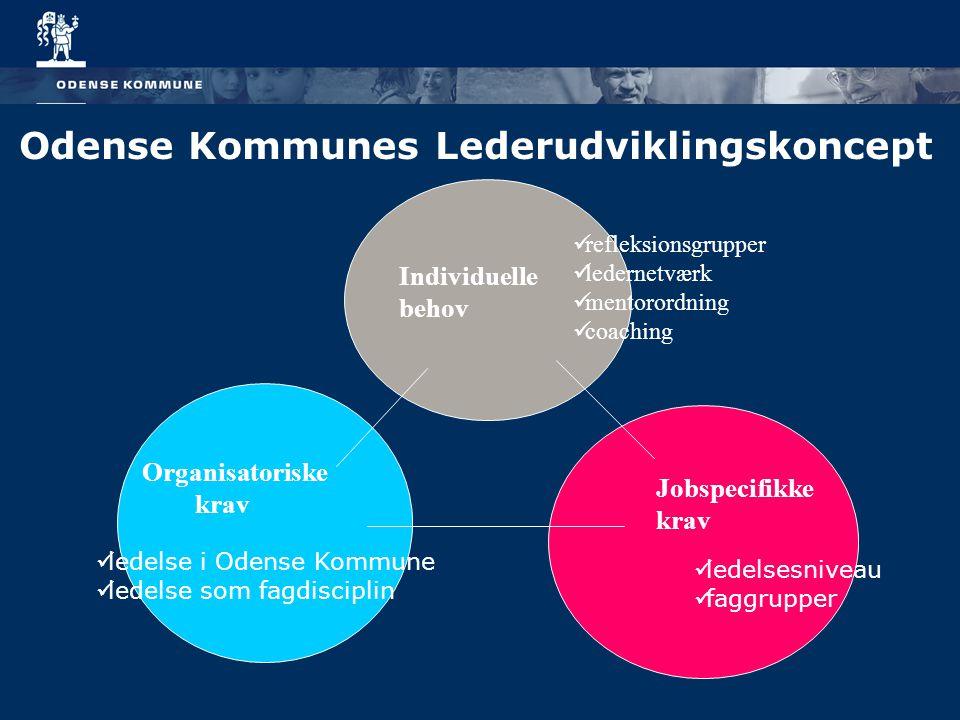 Odense Kommunes Lederudviklingskoncept