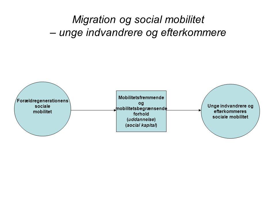 Migration og social mobilitet – unge indvandrere og efterkommere