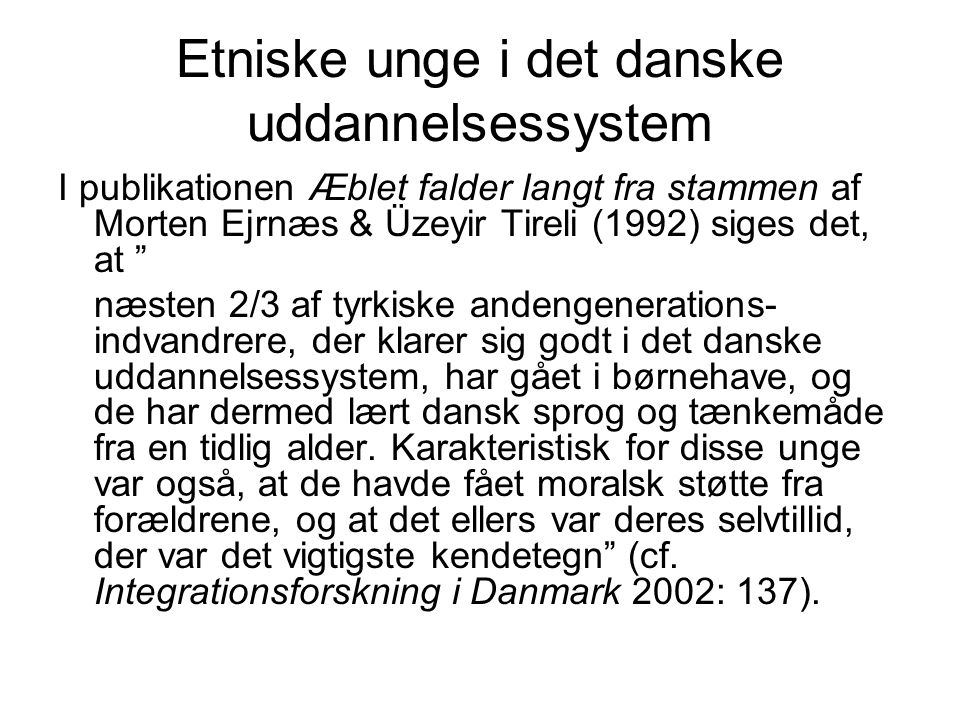 Etniske unge i det danske uddannelsessystem