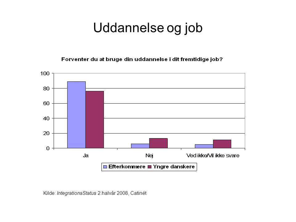 Uddannelse og job Kilde: IntegrationsStatus 2.halvår 2008, Catinét