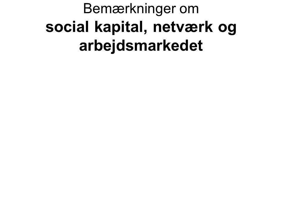 Bemærkninger om social kapital, netværk og arbejdsmarkedet