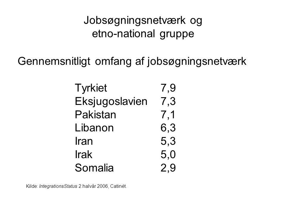 Jobsøgningsnetværk og etno-national gruppe