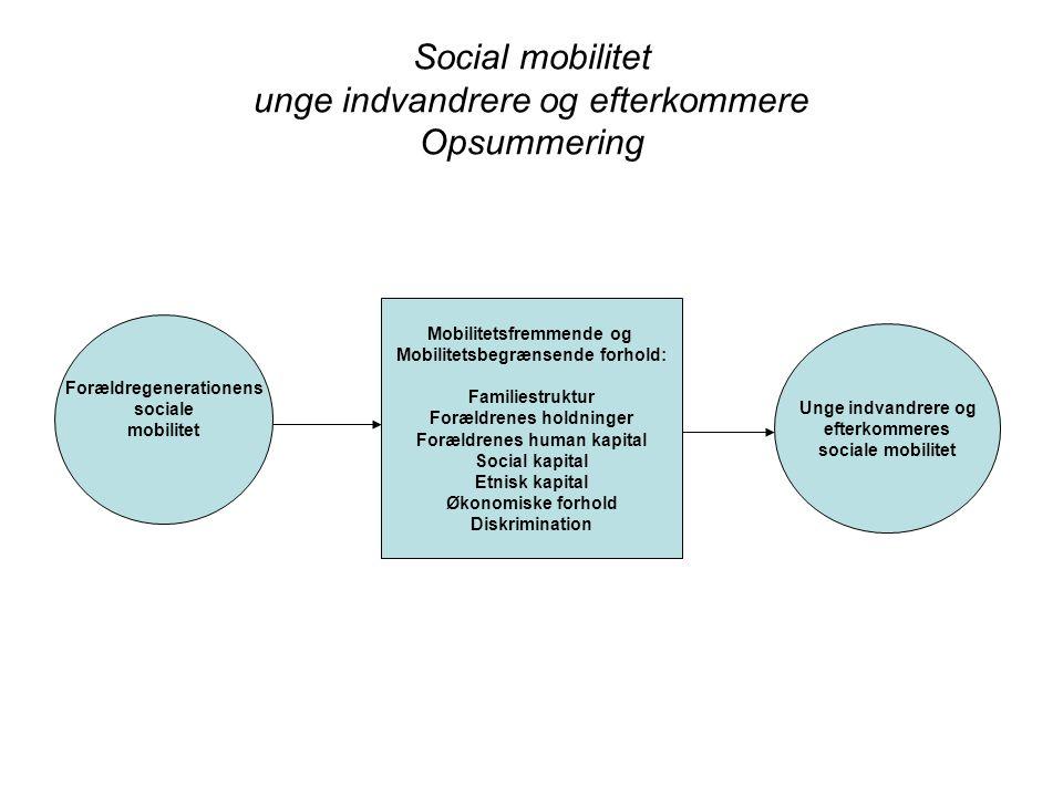 Social mobilitet unge indvandrere og efterkommere Opsummering